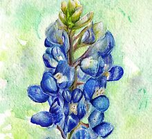 Texas Bluebonnet Wildflower by Ela Steel