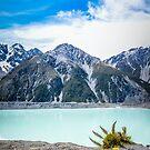 Abel Tasman Glacier by DebbyScott
