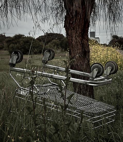 Dead Cart by sedge808
