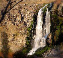 Thousand Springs, outside Hagerman, Idaho by trueblvr