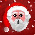 Father Christmas by Dulcina