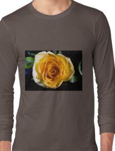 Backlit Yellow Rose Long Sleeve T-Shirt
