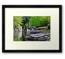 River Greta, Devil's Gorge. North of of England.  Framed Print