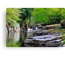 River Greta, Devil's Gorge. North of of England.  Canvas Print