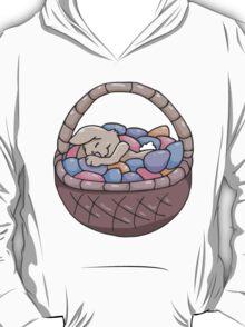 Asleep Amongst the Easter Eggs T-Shirt
