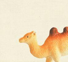 Cunning Camel Sticker