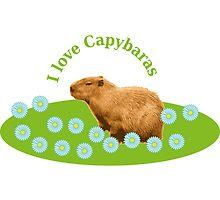 I love Capybaras by Vac1