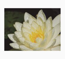Water lily 2 Kids Tee