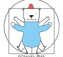 Vitruvian Bear by Orce
