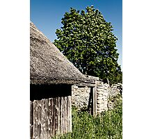 The Barn. The Tree. Photographic Print