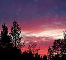 The Sunset in Nasva. by tutulele