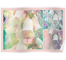 Foxgloves - The Trilogy Poster