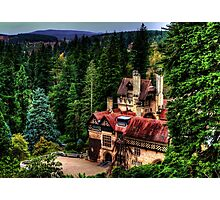 Cragside Northumberland #3 Photographic Print