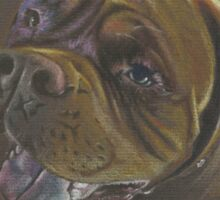 Chester a Dogue de Bordeaux Sticker