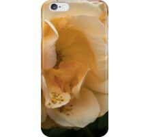 Dull pale yellow Camelia Leith Park Victoria 20151023 0476 iPhone Case/Skin