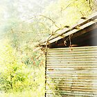 Old Shed by sacredmoments