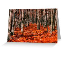Bloody forest Greeting Card
