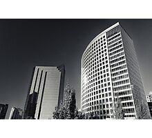 Bellevue Giants Photographic Print