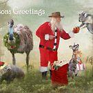 Aussie Bush Christmas by Trudi's Images
