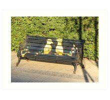Two birds on bench. Art Print