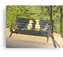 Two birds on bench. Metal Print