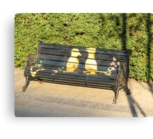 Two birds on bench. Canvas Print