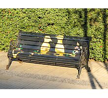Two birds on bench. Photographic Print
