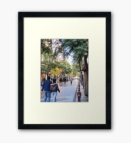 Street scene. Framed Print