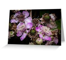Blackberry flower Greeting Card