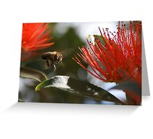 Torn between two Blossoms Greeting Card