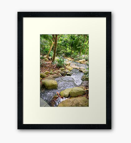 A stream in Singapore Botanical Gardens HDR Framed Print