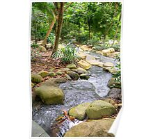 A stream in Singapore Botanical Gardens HDR Poster