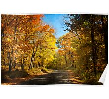 Leaf Peeping Poster