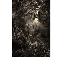 Steam and rainforest Photographic Print