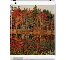 Reflection Island iPad Case/Skin