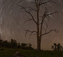 The Stars at Night, Are Big and Bright... by Kristin Repsher