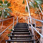 Mini Palm Gorge trail, Purnululu by DianneLac