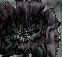 Mystery Flower by Jane Underwood