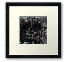 Mystery Flower Framed Print