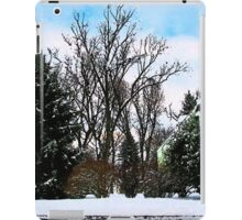 Trees in Snow iPad Case/Skin