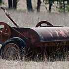 Antique Mower by Sherry Hallemeier