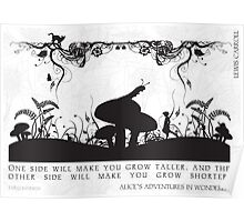 Alice's Adventures in Wonderland Black and White Illustrated Quote Poster