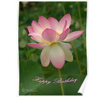 Pink Lotus - Happy Birthday Poster
