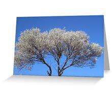 Growing Tree Greeting Card