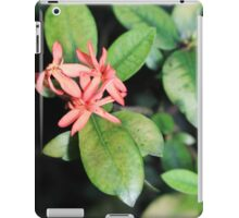 Tropical Exotic Coral Flower, Kew Gardens, London iPad Case/Skin