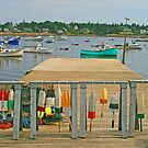 Bernard Harbor by Jack Ryan