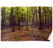Lost in the Trees  Poster