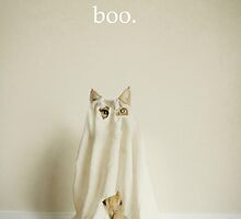 Ghost Cat by Catherine Holmes