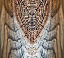 Wooden Heart by Gisele Bedard
