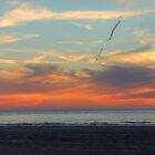 St Ouen Jersey Sunset by Mark Nelson